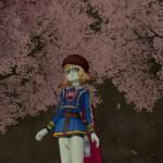 ドワーフたちの桜並木にて